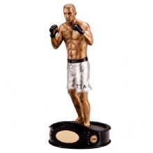 Ultimate MMA Fighter Award